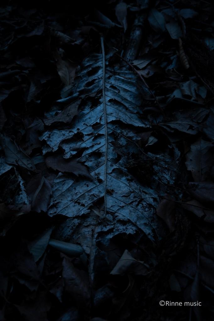 森まゆみ(1)